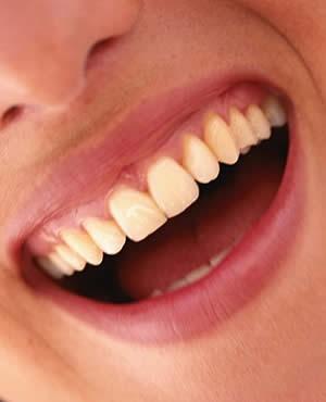 Imagem da notícia: Cientistas britânicos criam dente a partir de células da gengiva