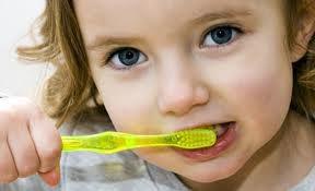 Imagem da notícia: Crianças portuguesas têm cada vez mais cuidados com os dentes