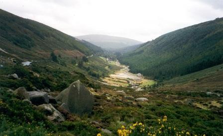 Imagem da notícia: Irlanda apresenta a DTAI