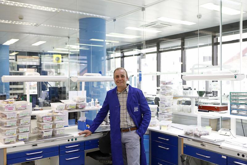 Imagem da notícia: Pedro Chora Estadão dirige Labimplant e Marum-Tecnidente