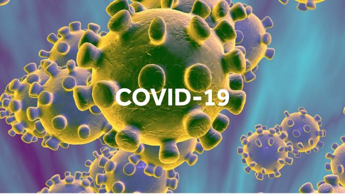 Imagem da notícia: Covid-19: Divulgado apoio financeiro a sócios-gerentes